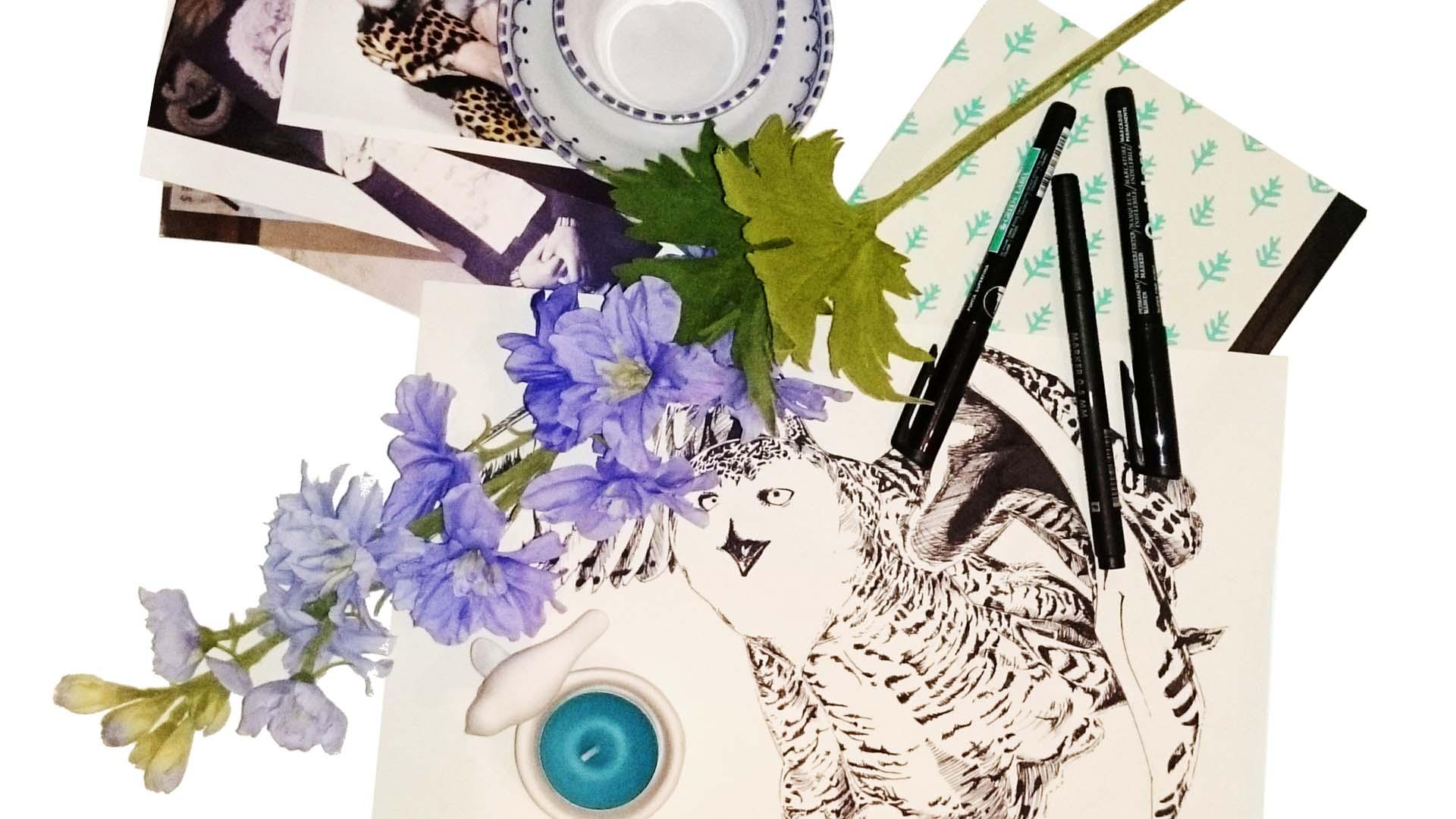 Ruiten Boerin raamillustraties front page header image