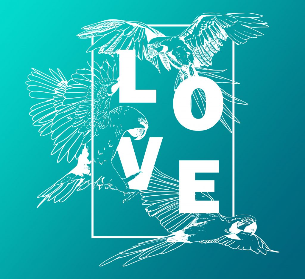 3 papegaaien rondom de letters LOVE