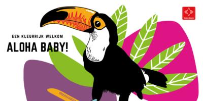 kleurrijke toekan illustratie met tekst: een kleurrijk welkom. Aloha baby!